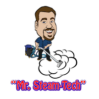 MR.-Steam-Tech-carpet-cleaning-fernandina-beach-logo-01 copy